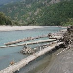 Squamish Beach